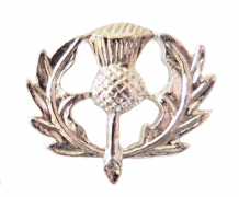 Scotland Thistle Nickel-Plated Pin Badge - T1056